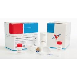Milenia® GenLine Lactobacillus/Pediococcus Screen