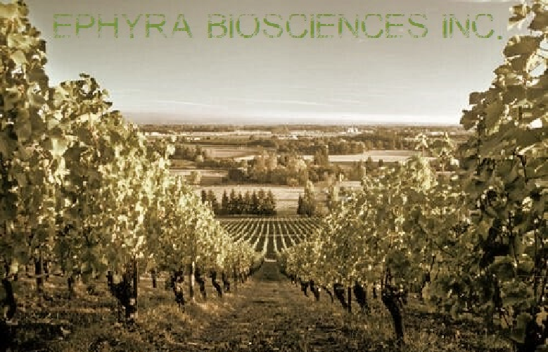 Ephyra biosciences Inc